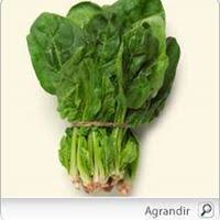 """""""December fruits and vegetables - Epinards"""""""