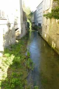 """""""medieval city - the river Voulzie in Provins"""""""