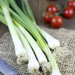 """""""10 fruits and vegetables to eat - poireaux"""""""