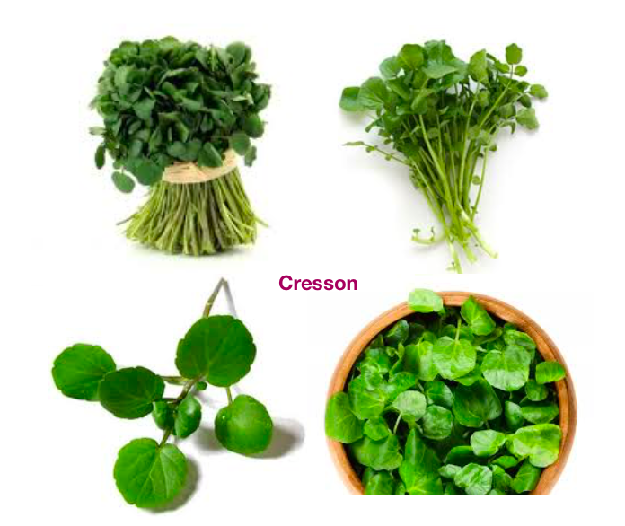 """watercress and spring vegetables in France"""