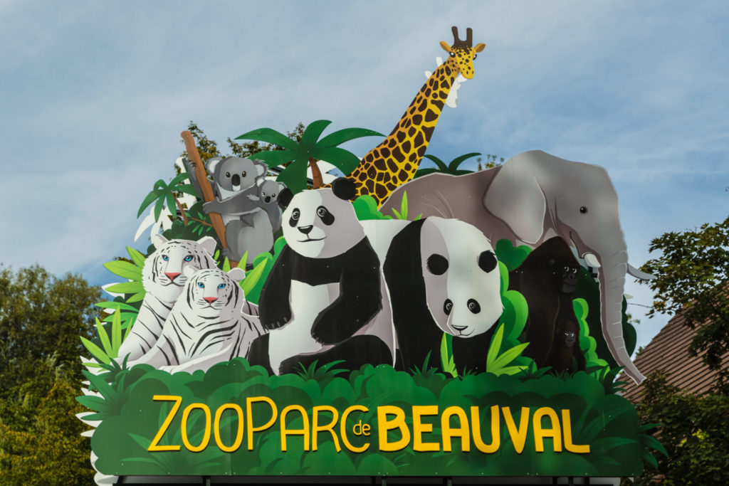 """Beauval Zoo - Learn French Language online and free, discover French Culture through reading about it"""